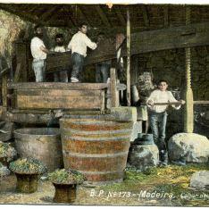 Prensado de la uva (Madeira)