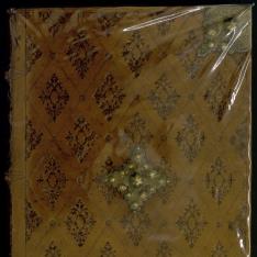 Corona florida medicinae, sive de conservatione sanitatis