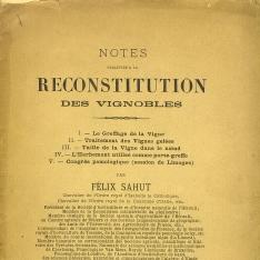 Notes relatives à la reconstitution des vignobles