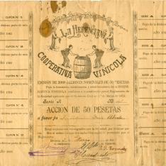 Título de acciones por valor de 50 pesetas. La Herenciana Cooperativa Vinícola. 1921