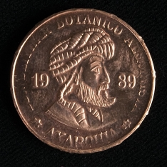 Moneda de cinco axarquillos