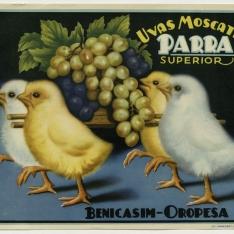 Cartel publicitario de uvas moscatel - Parra